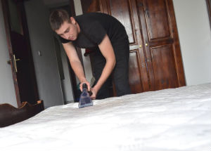 Mattress Cleaner Chiswick